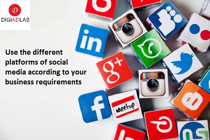 Use different platforms of social media according to your business requirements